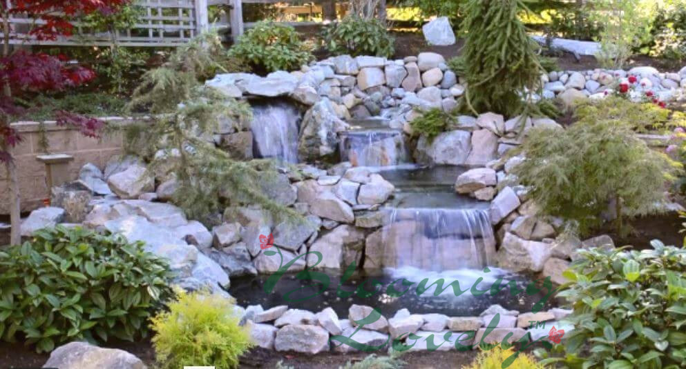 """Featured image for """"Ponds & Water Features"""""""